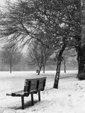 Tooting_common_bench_240x320